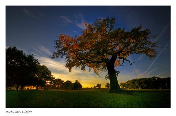 Autumn Light by katieb