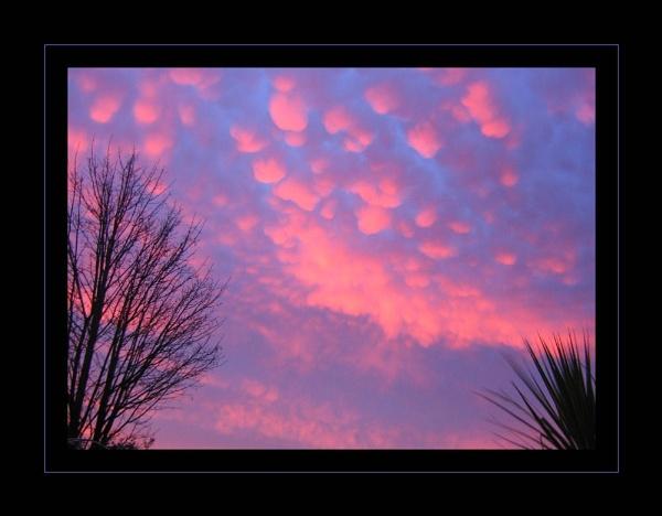Bright Sky by telfordtrio