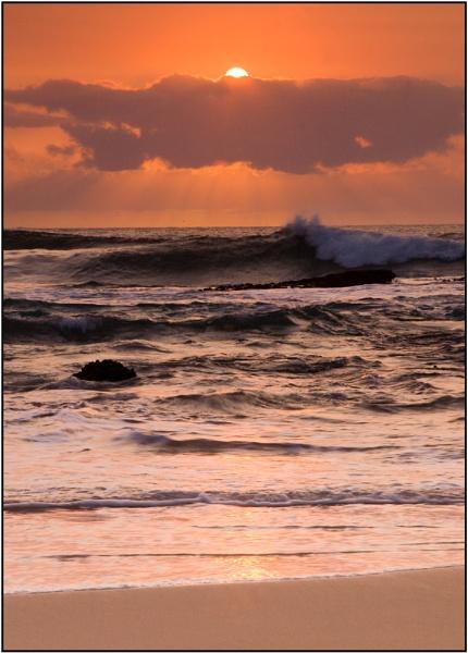 Bondi Sunrise II by Anastasia