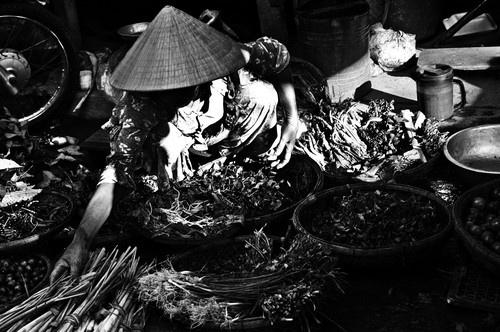 Market in Hoi An, Vietnam by Benji