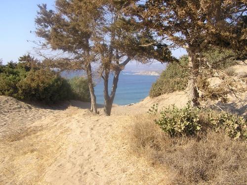 lara beach by sharonf