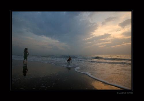 Beach Life by DaisyD50