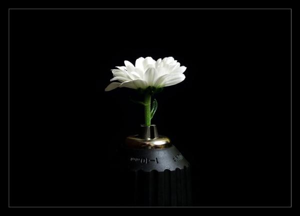 Flower Tools by Balakov