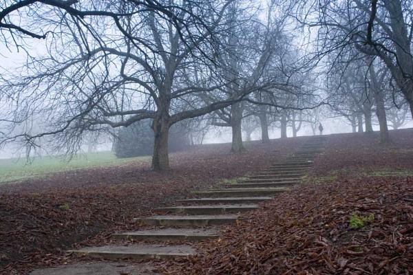Spooky stairway by salja03