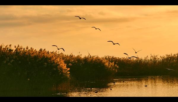 Evening Glow Akrotiri Salt Marshes