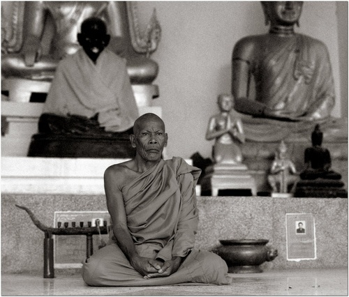 Buddha\'s Galore by MediumSizeUnavailable