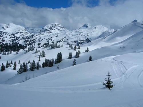 Alpine Snows by Apollo