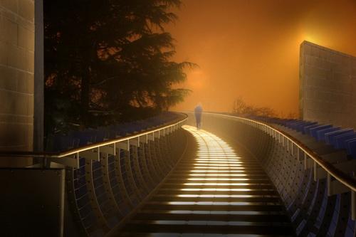 The Walkway by Randle