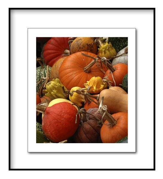 pumpkins by shortski