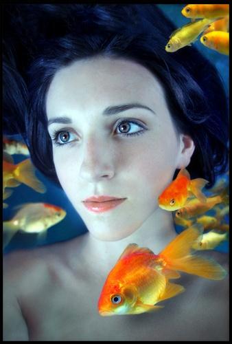 Gold Fish Bowl by becca_cusworth