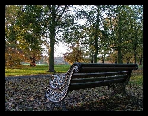 Park  bench by MandyS