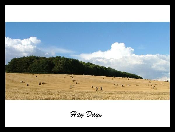 Hay days by MandyS