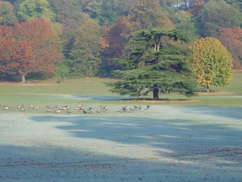 Autumnal Colours by paresh72