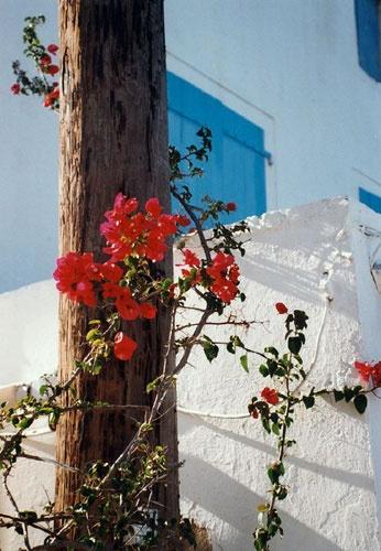 Greece by jeff50
