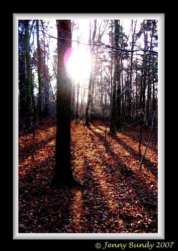 Sunrays by jb_127