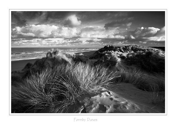 Formby Dunes (B+W) by pfheyes