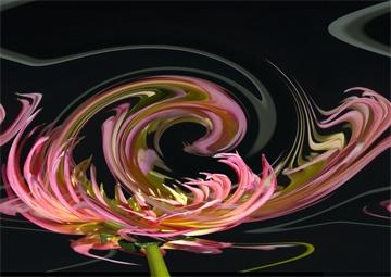 Dalia by dk.snakes