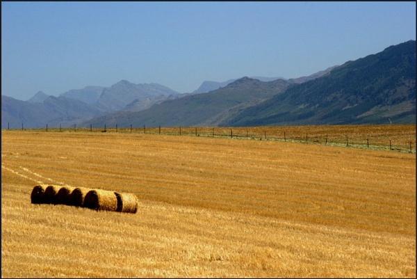 Tulbagh - Farmlands by Eden