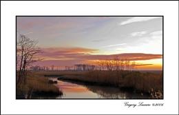 Sun Rise in the Marsh