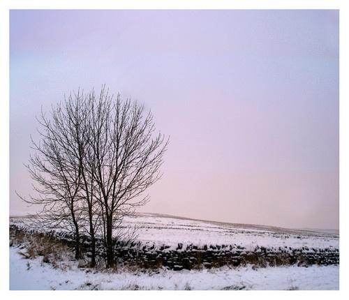 Love like Winter by becca_cusworth