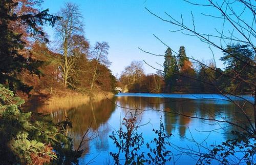 Lake through the trees by Kwosimodo