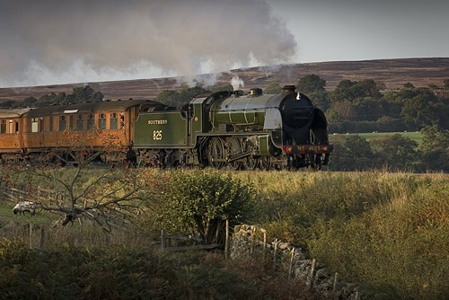 Full Steam Ahead by gwynann