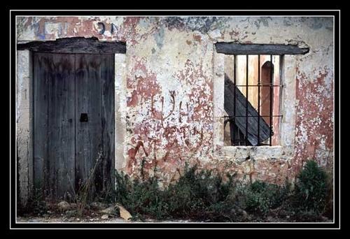 Door and Window by Apollo
