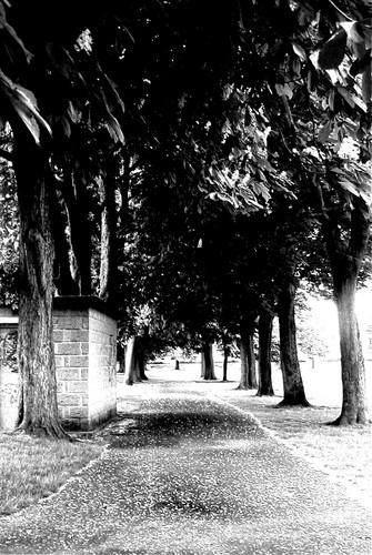 pilton park by suzmk