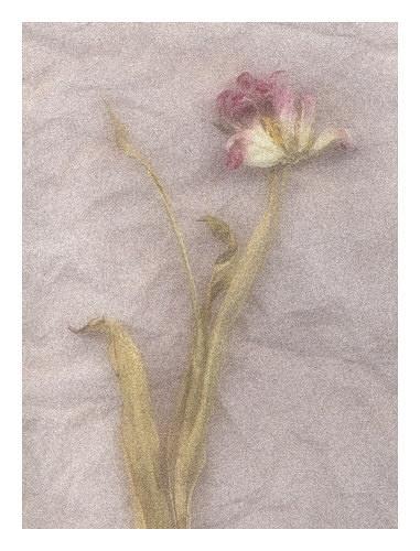 Fading Away by JohnHorne