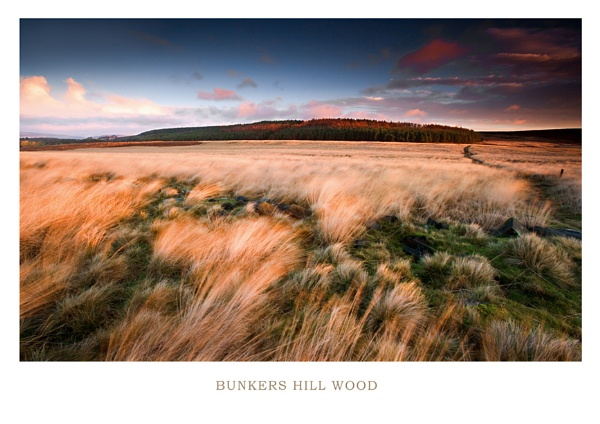Bunkers Hill by chris-p