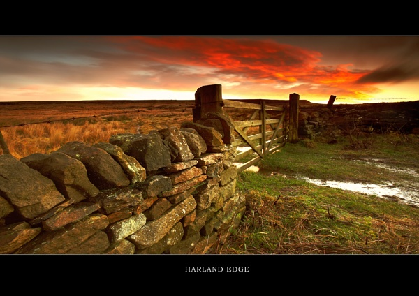 Harland Edge by chris-p
