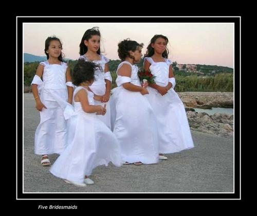 Five Bridesmaids by Apollo