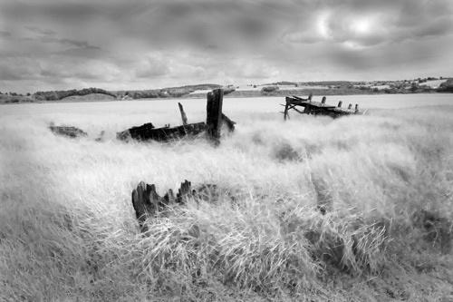 Fleet on the River Bank by gpwalton