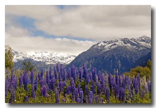 Alps by almar_digital