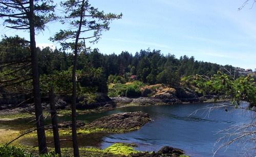 Neck Point Bay by Bear46404