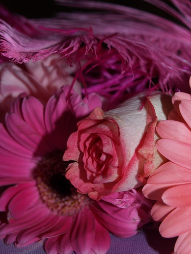 flowers by suzmk