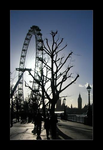 London Eye by SarahV