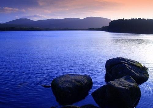 Loch Garten by andygibb
