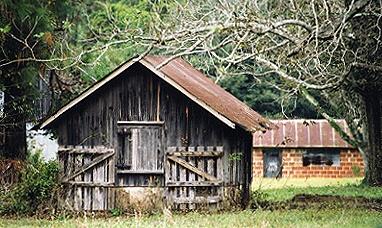old barn by tarara