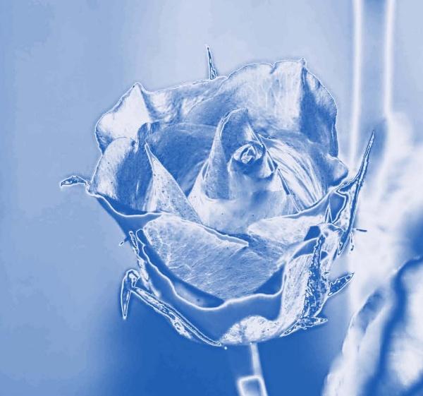 True Blue by Blueprint
