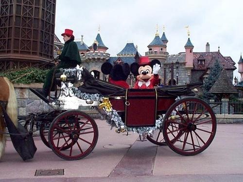 Disney  World by rmriph