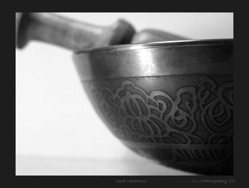 \'Good Vibrations\' by lotusphotos