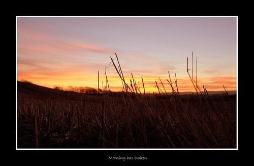 This Morning! by jamsa