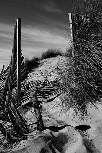 Dunes by gwynann