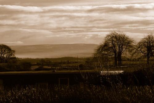 Misty Valley by steveg