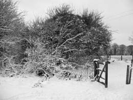 Cotswold escarpment snow scene