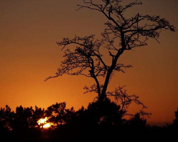 Winter Sunset by DJMidnight