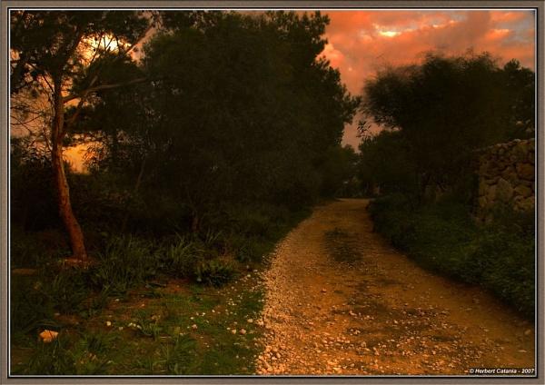 Cobble Way by BertC
