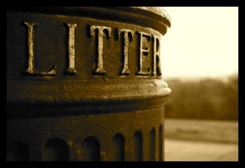 LitterBox by SarahK
