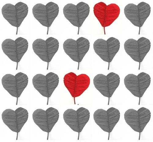 hearts by Nade